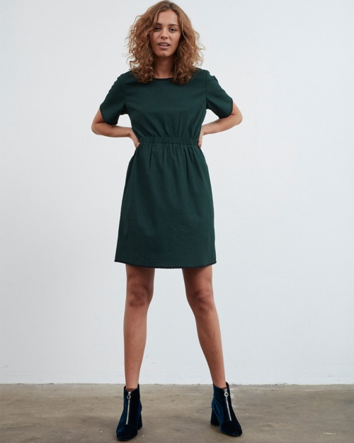 DALEY kleit - 4009 PINE GROVE